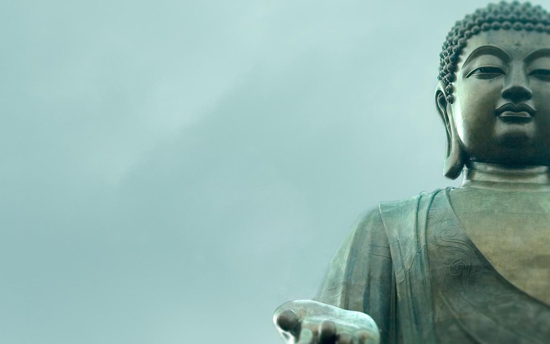 Gautama Buddha Quotes Buddha Quotes On Wisdom  Whitsunday Health And Wellness Retreats